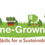 The Home Grown Institute